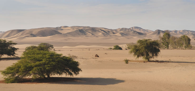 Desert like countryside of Western Peru