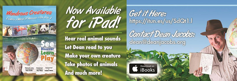 Available for iPad